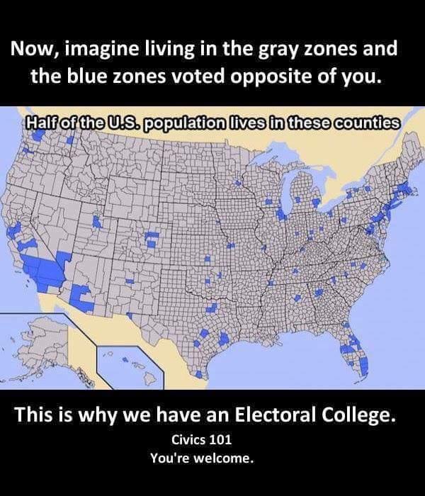 Democratic Presidential Election Voting